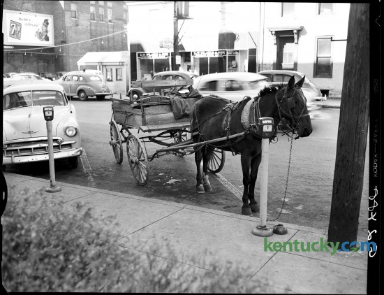 Lexington Leader photographer John C. Wyatt found this rig parked on North Limestone Street near the Lexington post office in November  of 1952. The wagon and Mollie, an 11 year old mare, were owned by J.C. Snowden of Route 6, Lexington. Published in the Lexington Leader November 10, 1952 Photo by John C. Wyatt | Staff