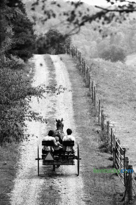 A Mennonite family drove a horse-drawn buggy down a country road in Casey County in 1991. The photo ran in the paper as part of a 'Day Trip' feature to various communities in the state. Photo by David Perry | Staff