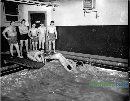 A YMCA senior life saving class at the YWCA pool, February 1951 in Lexington. Jack Rose and Gerald Mialle dive in, while Estill Lyons, Paul Rose, David Mangione, Billy Wills and Donald Sullivan look on. Herald-Leader archive photo