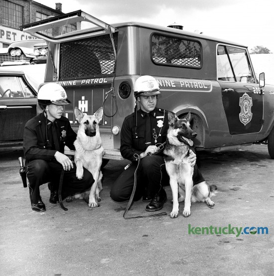 The Lexington Police Department's first canine unit, Nov. 1962. Pictured from left are Patrolmen Robert Waggoner and Eugene Bowling and their police dogs, Buddy and MacDuff.  Published in the Lexington Herald November 4, 1962. Herald-Leader Archive Photo