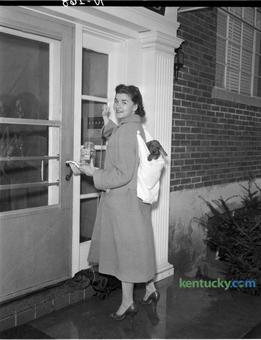 Mrs. Harold B. Pressman will carry her puppy in a knapsack as she makes her rounds collecting for the Mothers March on Polio in January 1957. The photo was taken to promote the upcoming collection march in which 2,250 women were scheduled to knock on doors Thursday January 31, 1957 in Lexington and Fayette County. Published in the Lexington Leader January 29, 1957. Herald-Leader Archive Photo