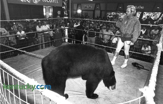"Victor the wrestling Bear took on all commers during Fayette Mall's ninth anniversary celebration in September 1980. Victor, stood 6'9"" tall and weighed around 650 pounds. Anyone over the age of 18 could wrestle Victor. Photo by Ron Garrison 