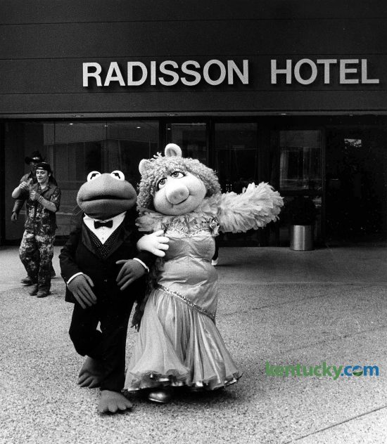 """""""Muppets"""" stars Miss Piggy and Kermit the Frog checked in to the Radisson Hotel March 14, 1985 before they took a carriage ride through downtown Lexington. The stars arrived at the hotel in a limousine. Built by The Webb Companies in 1982, The Radisson Plaza Hotel became a Hilton hotel in 2009. Photo by Nick Nickerson 