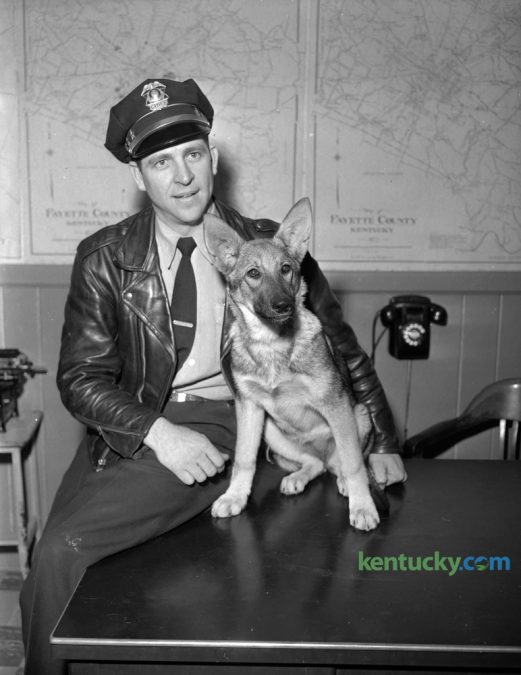 Fayette County Patrol Chief Kenneth Banks was shown with a German Police pup he planned to train for police work. Photographed in March 1956. The United States Police Canine Association Region 5 Certification and Trials concludes today at the Carnahan House. Herald-Leader Archive Photo